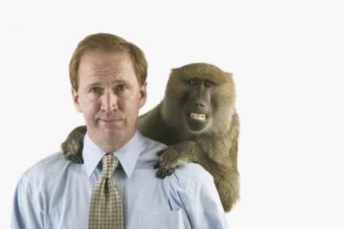 Менеджер и его время или Кому достанется обезьяна